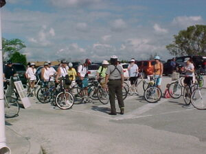 A group of bike riders enjoying an Everglades ecotour on the Everglades bike trail.