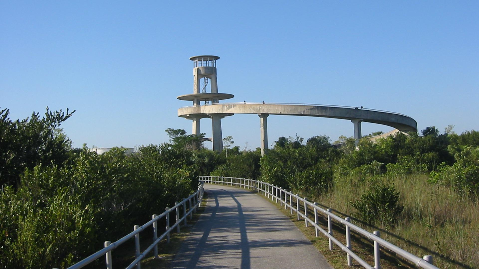 Visitors On The Shark Valley Observation Tower